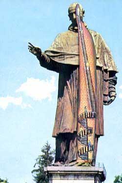 la statua di San Carlo in sezione