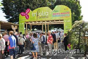 MostraMercato_Trifolia_20160917_EGS2016_29203_s