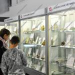 EGS2017_28707 | Museo Mineralogico Arona