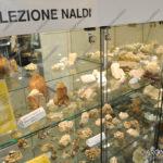 EGS2017_28740 | Collezione Naldi al Mineralogico di Arona