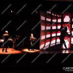 EGS2018_03742 | Controluce Teatro d'ombre