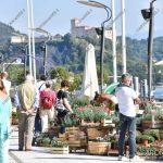 EGS2018_32162 | Trifolia 2018 – Mostra mercato florovivaistica