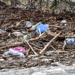 EGS2018_38209 | 02.11.2018 - Beach litter in Piazza del Popolo