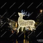 EGS2018_40916 | La renna gigante in piazza del Popolo