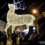EGS2018_40927 | La renna gigante nel bosco incantato di piazza del Popolo