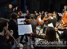 Concerto_IlMondodegliStrumentiadArco_ArcheiaOrchestra_20191207_EGS2019_42123_s