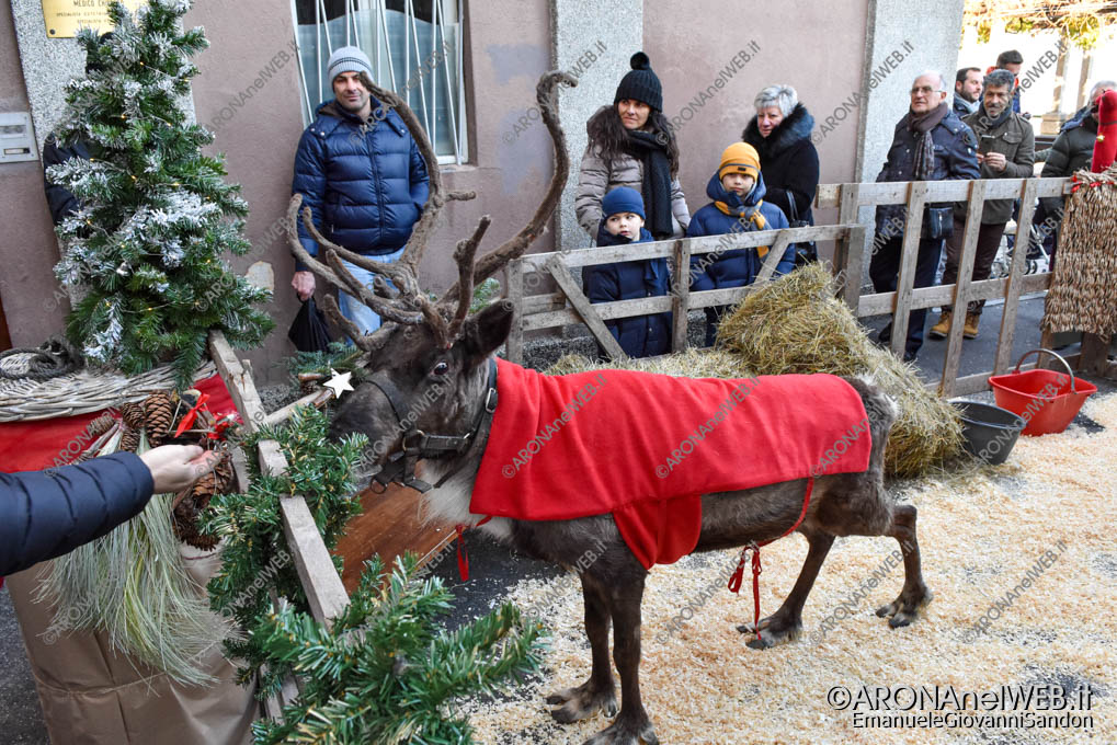 EGS2019_42400 | La renna di Babbo Natale