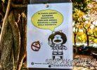 Iniziativa_DivietoFumo_Mafalda_ParcoGiochiArona_20201017_EGS2020_17257_s