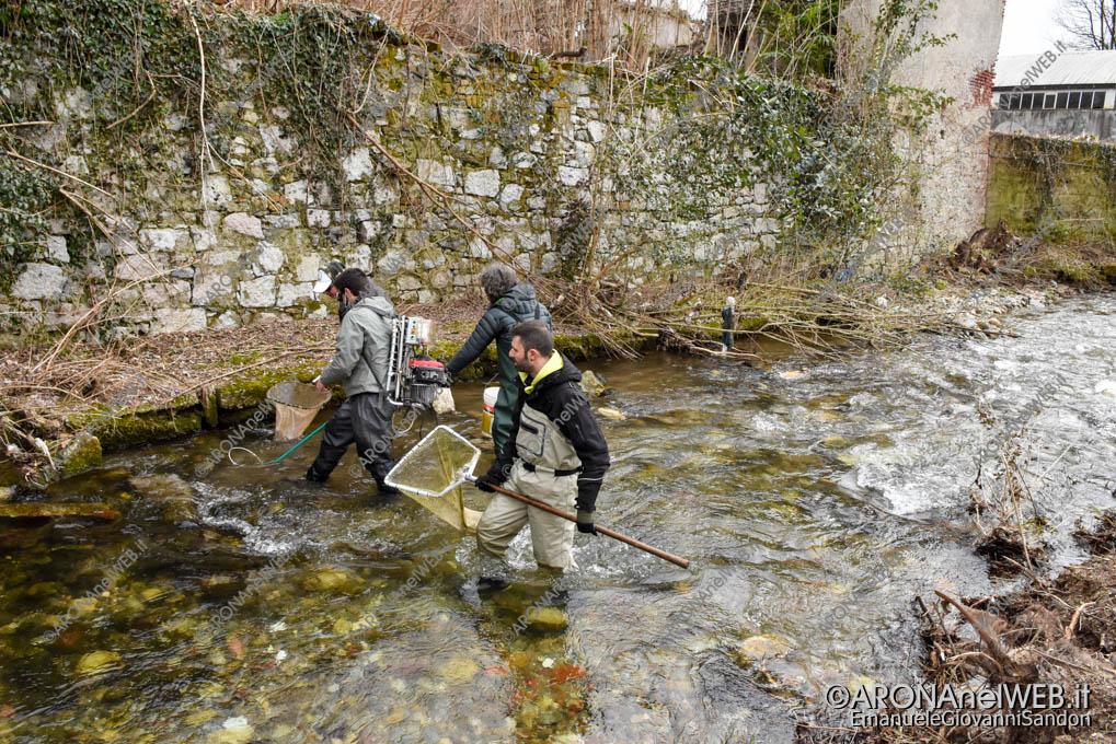 EGS2021_00317 | FIPSAS Novara recupera i pesci presenti nel tratto interessato dai lavori in Via Monte Nero