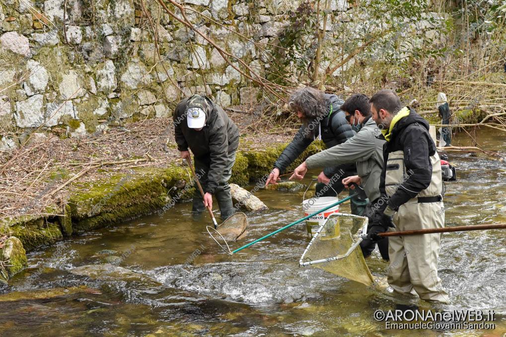 EGS2021_00323 | FIPSAS Novara recupera i pesci presenti nel tratto interessato dai lavori in Via Monte Nero