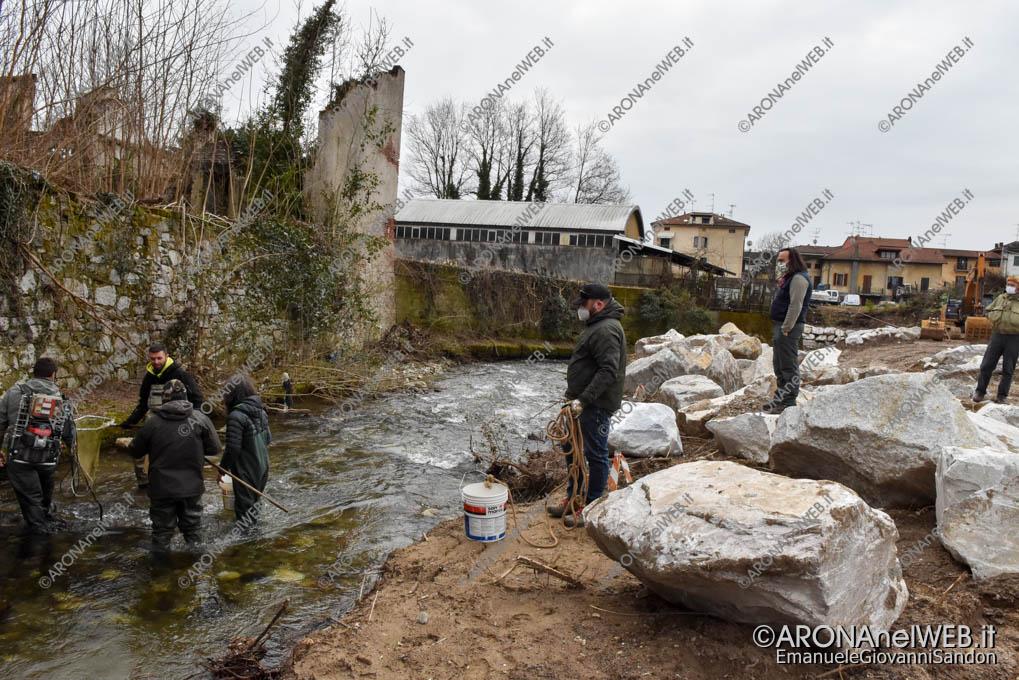 EGS2021_00329 | FIPSAS Novara recupera i pesci presenti nel tratto interessato dai lavori in Via Monte Nero