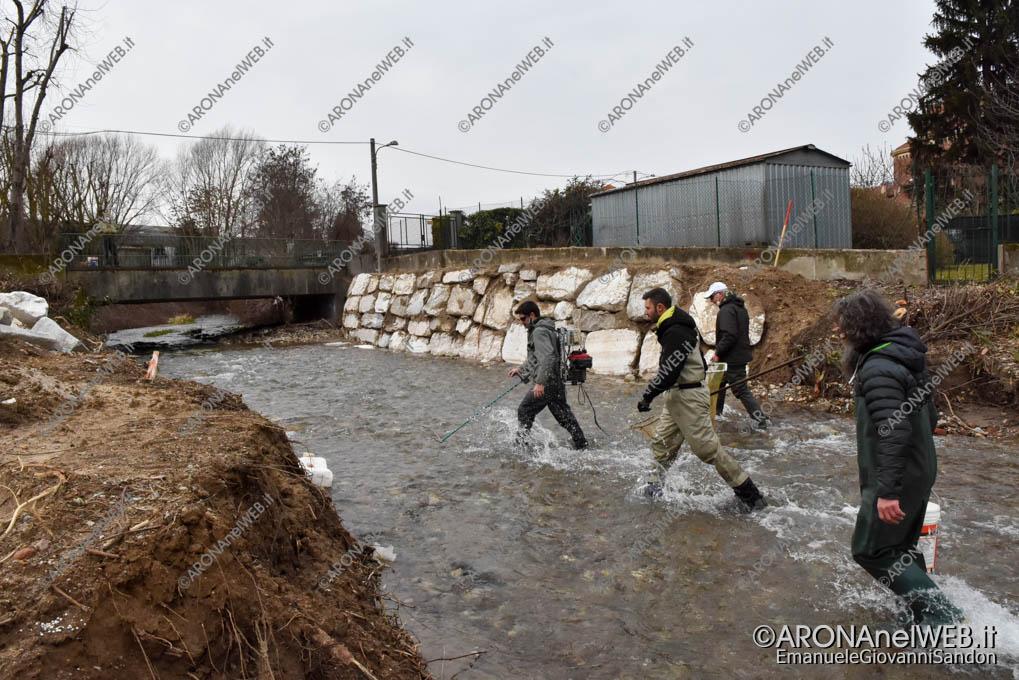 EGS2021_00365 | FIPSAS Novara recupera i pesci presenti nel tratto interessato dai lavori in Via Monte Nero